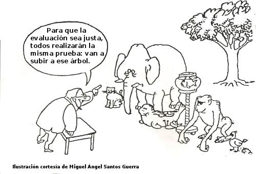 evaluacion animales selva